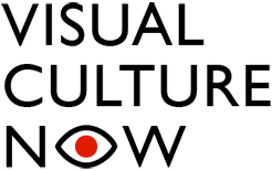 Visual Culture Now